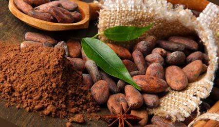 Разрешено ли употребление какао при беременности. Можно ли пить какао беременным
