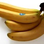 Можно ли бананы при грудном вскармливании