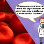 Повышенные эритроциты в моче (гематурия) у беременной